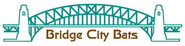 Bridge City baseball Bats